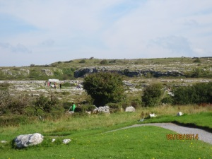 The Burren. The ground is pretty much rock.